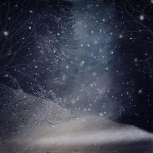 Midnight Christmas