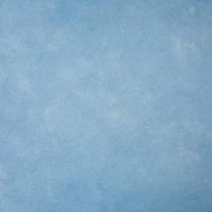 Pale Blue Skies by Luisa Dunn