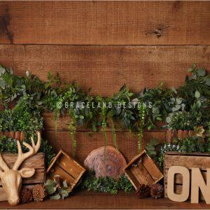 Minnesota Moose by Alana Taylor Designs