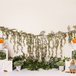 Oh Carrots! by Alana Taylor Designs
