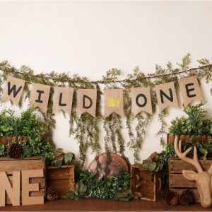 Wild One by Alana Taylor Designs